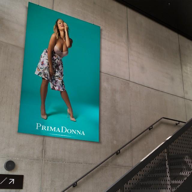 PrimaDonna: take control of sexy!