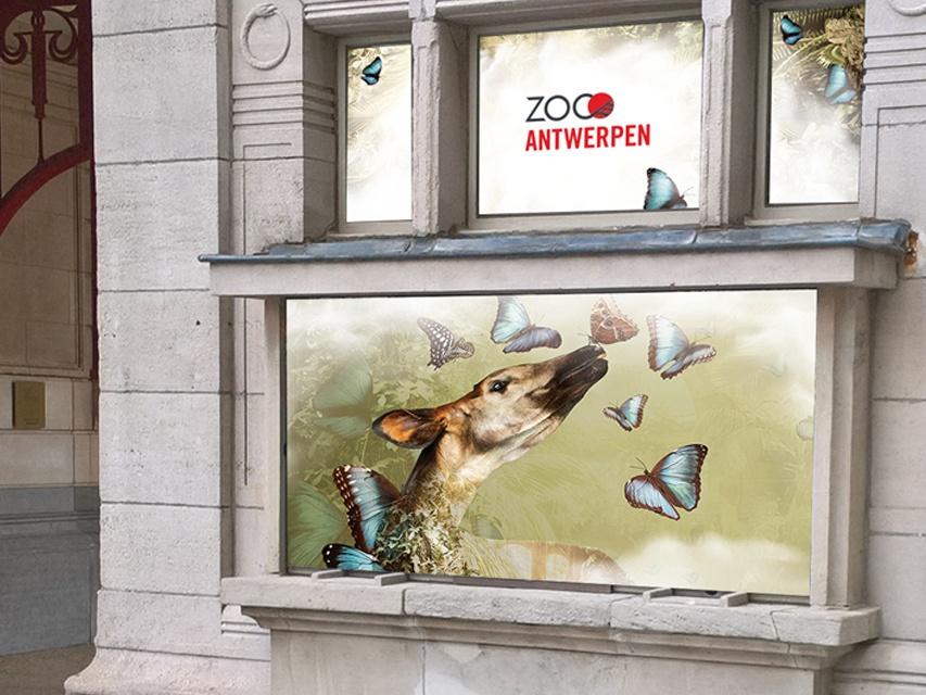 Zoo antwerp - mockup 2