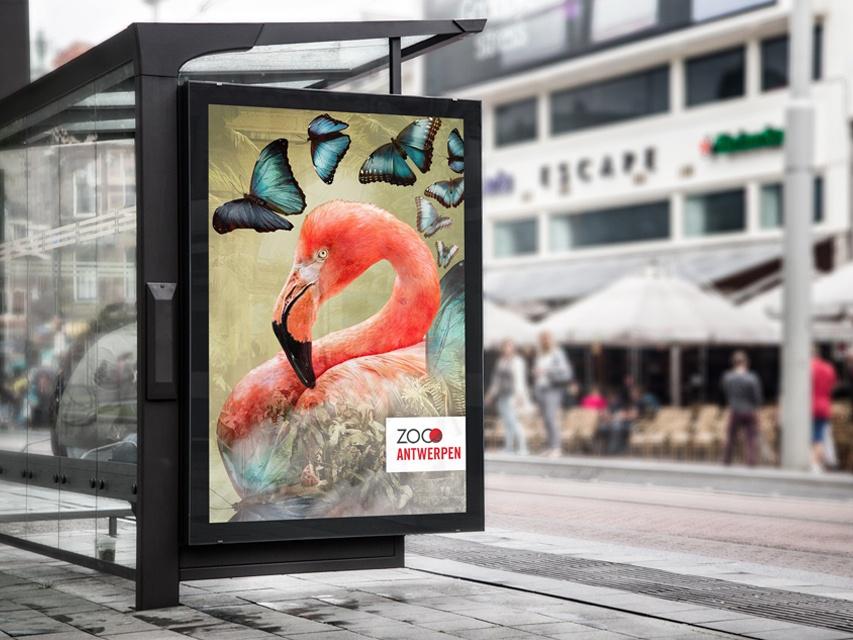 Zoo antwerp - mockup